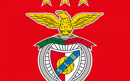 Benfica okkkkkkkkkkkkkk