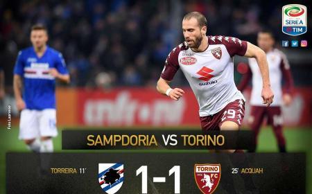 Sampdoria Torino 1-1