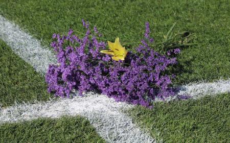 Stadio Udinese fiori Astori